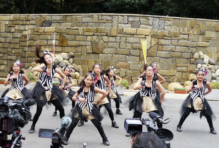 2016年10月29日(土) 第3回東京舞祭『秋』
